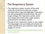 the respiratory system1
