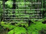 37 1 soil contains a living complex ecosystem