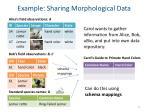 example sharing morphological data