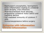 epilepsies with inflammation chronic inflammation