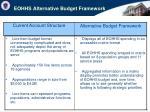 eohhs alternative budget framework
