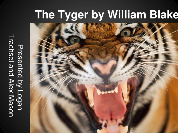the tyger by william blake n.