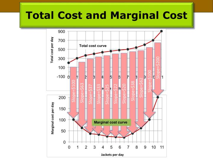 Total Cost and Marginal Cost