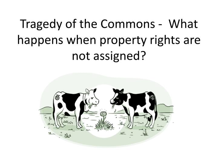 Tragedy of the Commons -  What happens when property rights are not assigned?