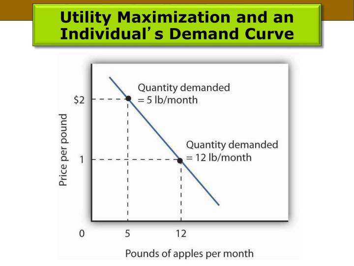 Utility Maximization and an Individual