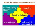 what is the routine immunization system