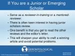 if you are a junior or emerging scholar