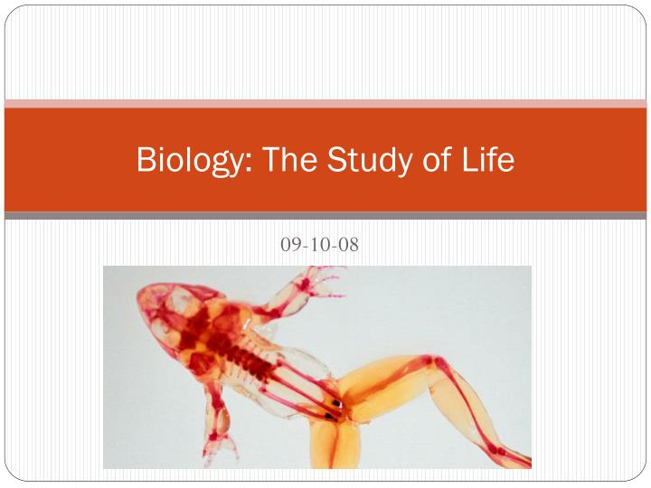 biology the study of life n.