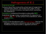 pathogenesis of ie 2