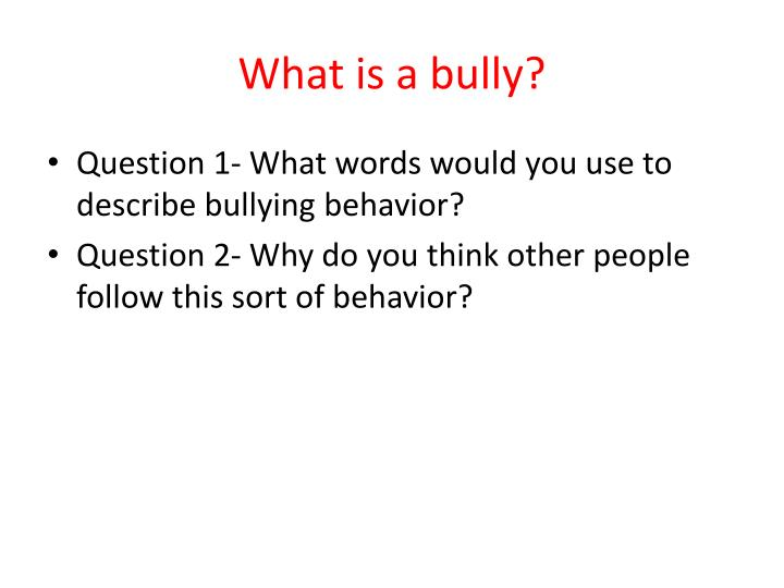 what is a bully n.