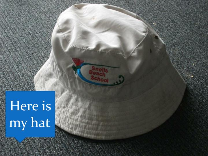 Here is my hat