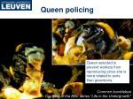 queen policing