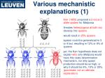 various mechanistic explanations 1