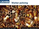worker policing1