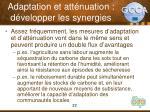 adaptation et att nuation d velopper les synergies