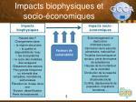 impacts biophysiques et socio conomiques
