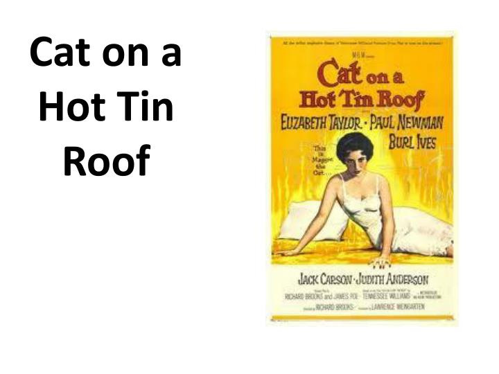 cat on a hot tin roof n.