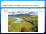 water pollution affects water ecosystems