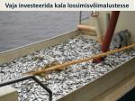 vaja investeerida kala lossimisv imalustesse