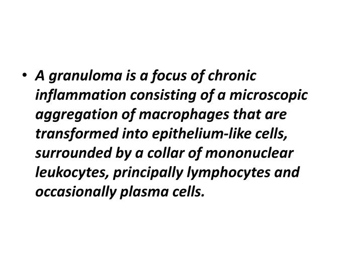 A granuloma is a focus of chronic inflammation consisting of a microscopic aggregation of macrophages that are transformed into epithelium-like cells, surrounded by a collar of mononuclear leukocytes, principally lymphocytes and occasionally plasma