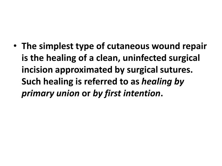 The simplest type of cutaneous wound repair is the healing of a clean, uninfected surgical incision approximated by surgical
