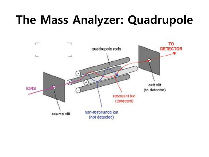 The Mass Analyzer: