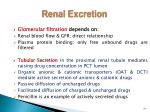 renal excretion