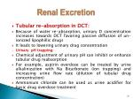 renal excretion1