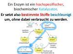 ein enzym ist ein hochspezifischer biochemischer katalysator2