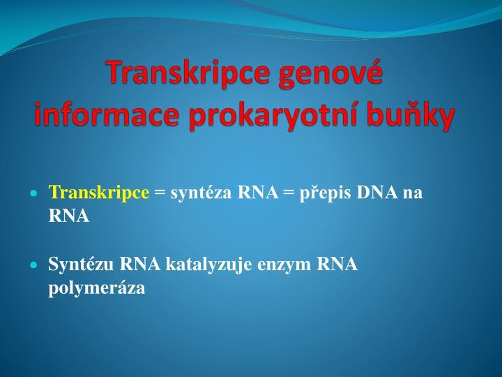 Transkripce genové informace