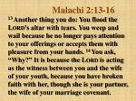 malachi 2 13 16