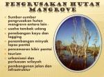 pengrusakan hutan mangrove