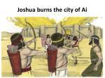 joshua burns the city of ai