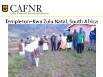 templeton kwa zulu natal south africa