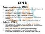 ctn b1