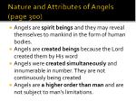 nature and attributes of angels page 300