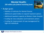 mental health 20 million plus federal matching funds