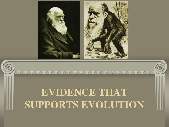 evidence that supports evolution n.