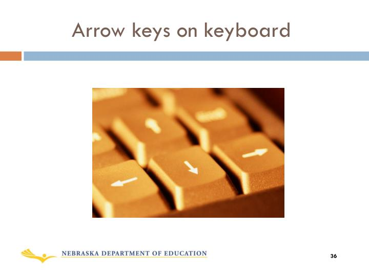 Arrow keys on keyboard
