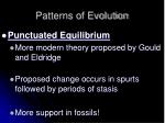 patterns of evolution4