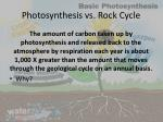 photosynthesis vs rock cycle
