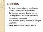 khorion