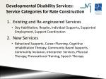 developmental disability services service categories for rate construction