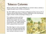 tobacco colonies