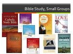 bible study small groups