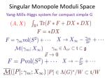 singular monopole moduli space
