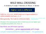 wild wall crossing