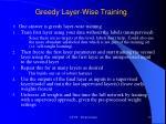 greedy layer wise training