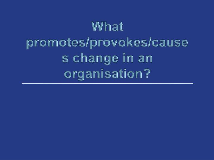 What promotes provokes causes change in an organisation