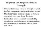 response to change in stimulus strength